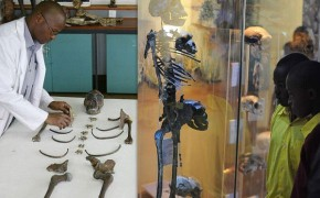 Kenyan Exhibit of Ancient Skeletons Fuels Creationism vs. Evolutionism Debate