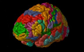 Neurotheology: This is Your Brain on Religion