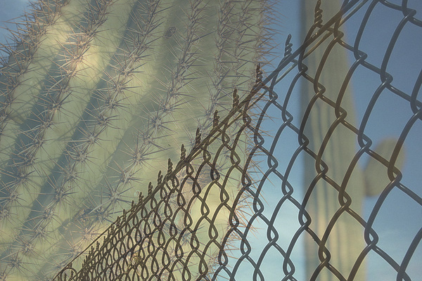 AZ Prisoners Fight to Practice Hawaiian Religion
