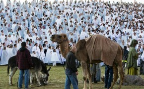 Huge Live Nativity Scene Breaks a Guinness World Record