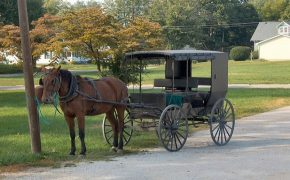 Amish Man Not Allowed to Buy Gun is Suing U.S. Government