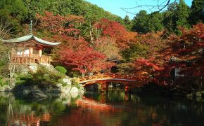 Buddhist Temples are Closing in Japan At A Startling Rate