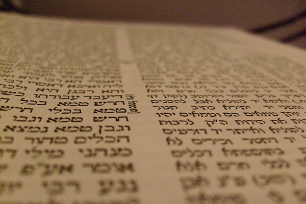 Translations Into Italian: App Helps Translate Talmud Into Italian For The First Time