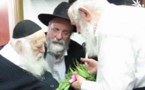 Rabbis Find Marijuana to be Kosher