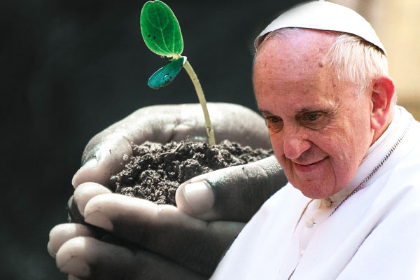 Pope Francis Environment