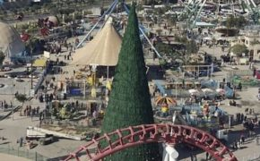 Iraqi Muslim Gets Giant Christmas Tree for Christians in Baghdad