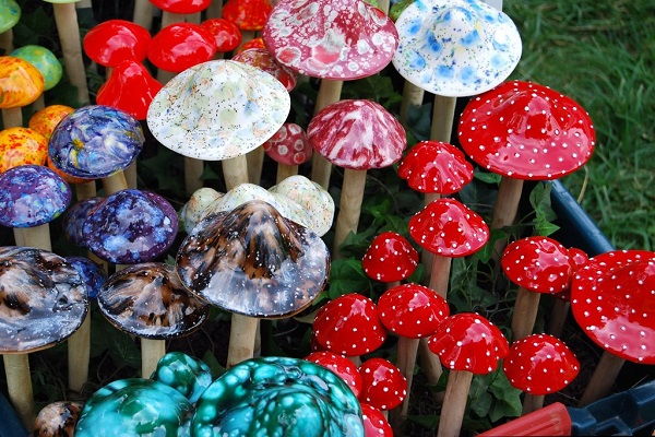 By Janine from Mililani, Hawaii, United States (magic mushroomsUploaded by Fæ) [CC BY 2.0], via Wikimedia Commons