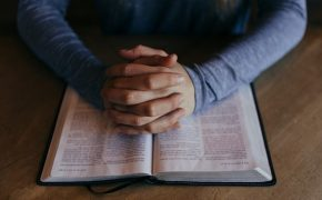 The Bible is in 87% of American Households