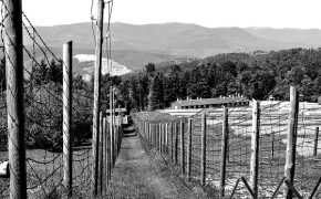 Austria Recognizes 31 Jehovah's Witnesses Who Were Killed in Concentration Camps