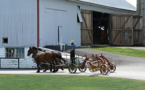 Amish Embracing Use of Technology at Work, But Vow to Keep It Out of Their Homes