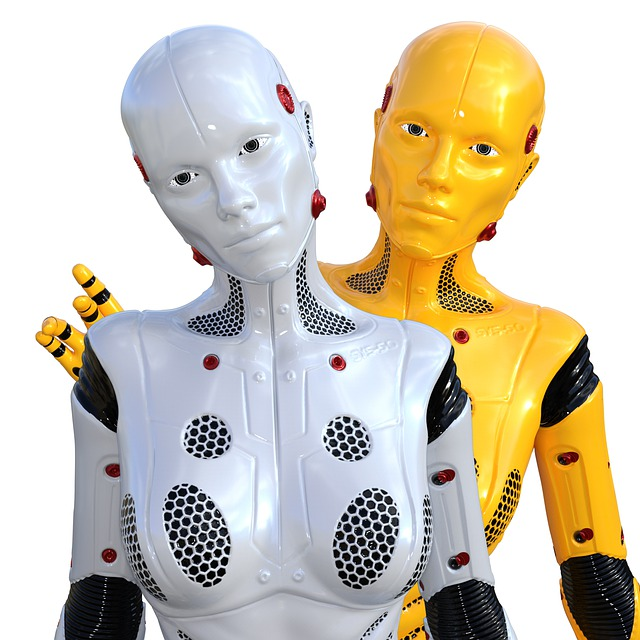 Is it okay for Christians to have Sex with Robots?