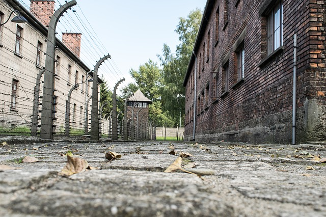 Is Poland Trying to Forget The Holocaust?
