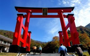 What Is the Significance of a Torii?