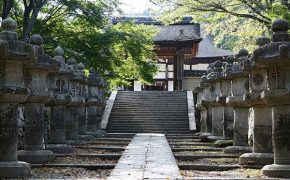 Would You Like to Stay the Night in a Buddhist Temple?