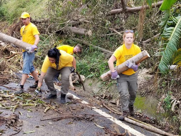 Working with the local army to clear debris from a road in Puerto Rico