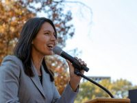 Tulsi Gabbard's Connection to Hindu Nationalists Raises Concern
