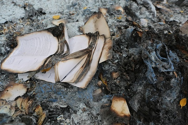 Polish Priests Burn 'Twilight' and 'Harry Potter' Books