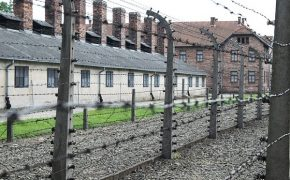 White House Designates Holocaust Remembrance Week