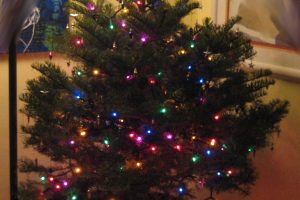 Happy Holidays: The Real War on Christmas by Dr. Arik Greenberg